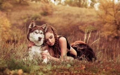 История о двух собаках