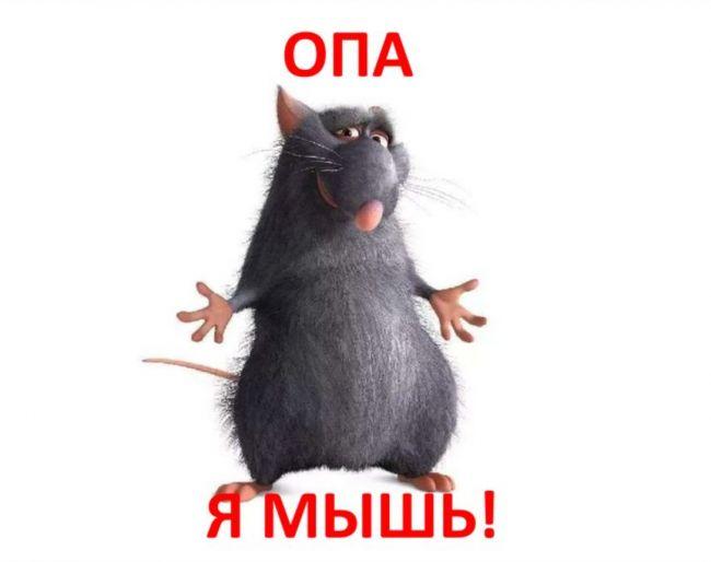 Я - мышь!