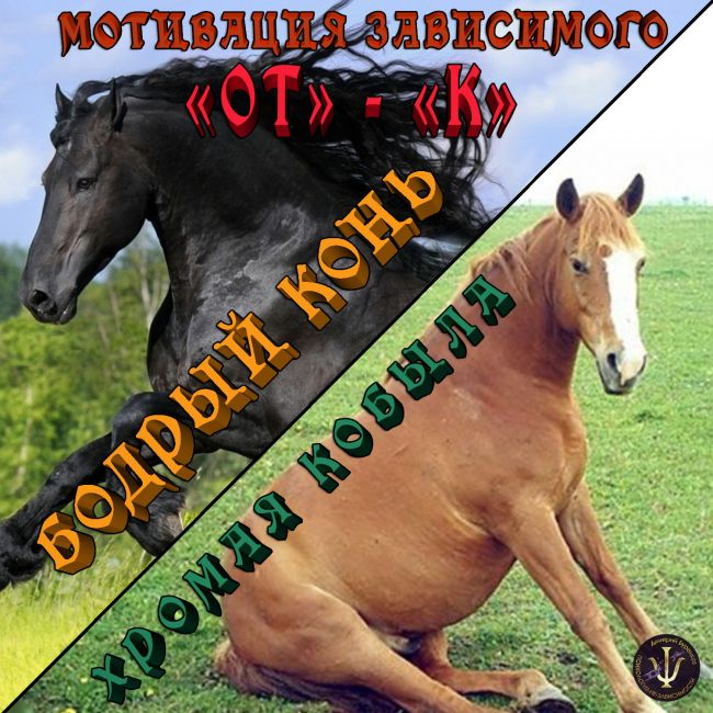 Выздоравливающий зависимый. «Бодрый конь или хромая кобыла?» Мотивации «ОТ и К»