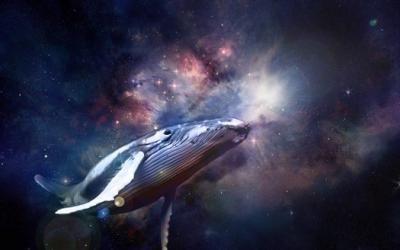 Виноваты звезды: 8 причин, почему люди верят гороскопам