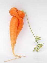 Любовь-Морковь. Взгляд под экзистенциальным углом