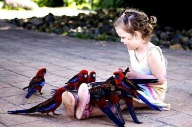 Родительские установки, и что с ними делать