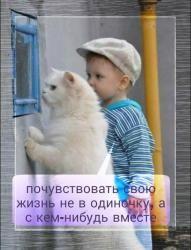 =Погладь кота или про_быть вместе=