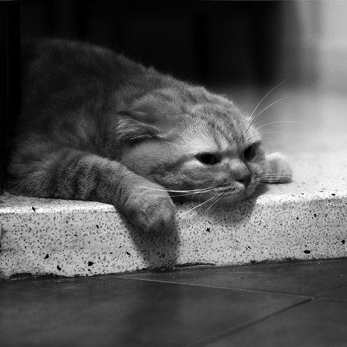10 искажений в познании, вызывающих комплекс вины или депрессию, Д.Бернса
