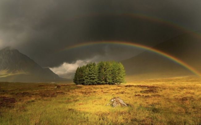 Увидеть свою радугу