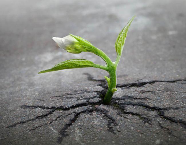 Почему сложно менять жизнь к лучшему?