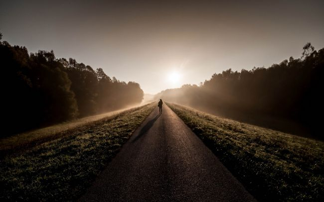 Путь терапевта: от хрупкости до устойчивости