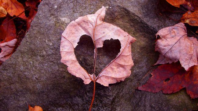 Любовь невротика