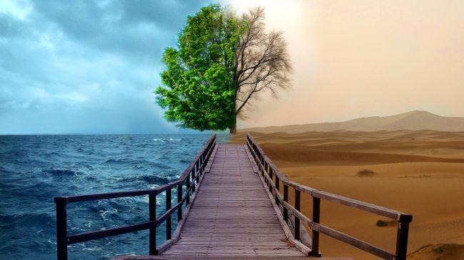 Внутренние конфликты и противоречия