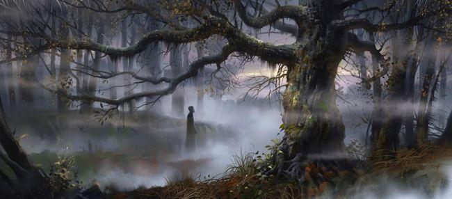 История о дремучем лесе