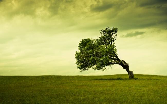 Как экологично пережить расставание